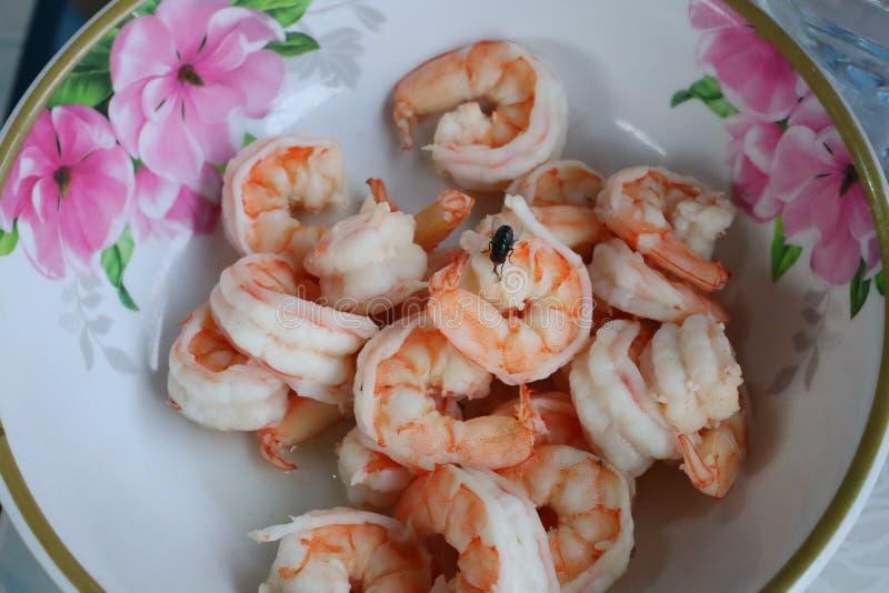 Vuele en la comida en la taza del camarón foto de archivo libre de regalías