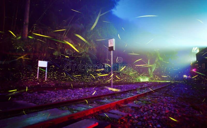 Vuelo de la luciérnaga en el ferrocarril Luciérnagas en el fondo colorido en la escena de la noche en verano Foto larga de la exp fotos de archivo libres de regalías