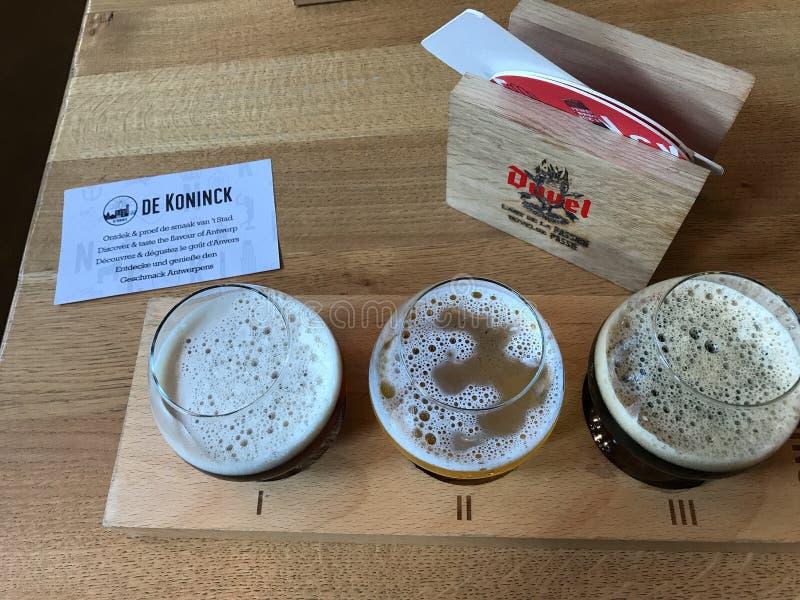 Vuelo de la muestra de la cerveza de De Koninck, Amberes, Bélgica foto de archivo libre de regalías