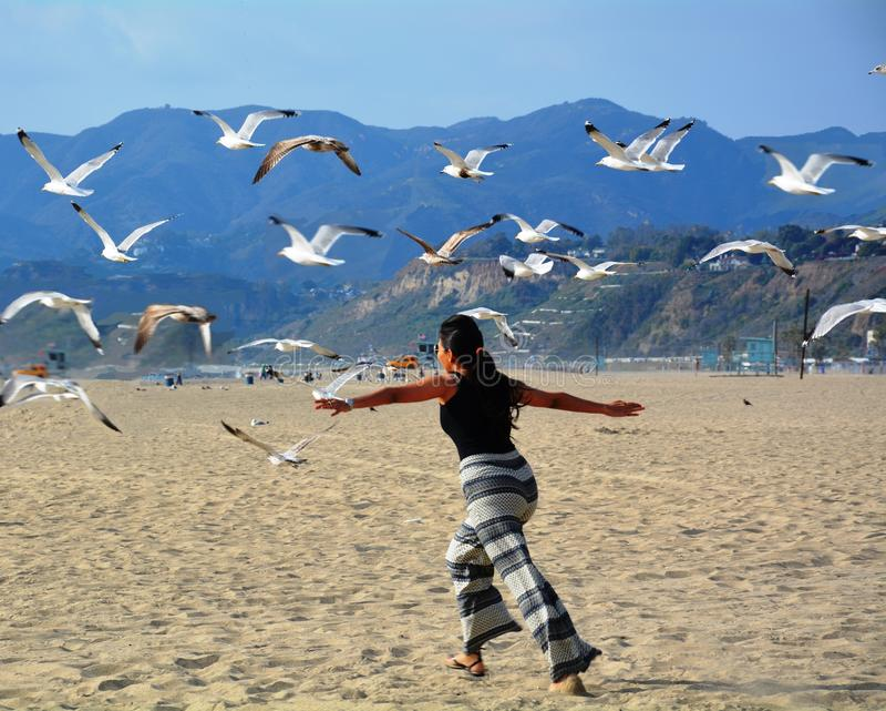 Vuelo de la mujer con los pájaros de mar en la playa fotos de archivo