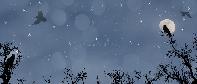 Vuelo de medianoche. Luna, estrellas, cuervos y gato. ilustración del vector