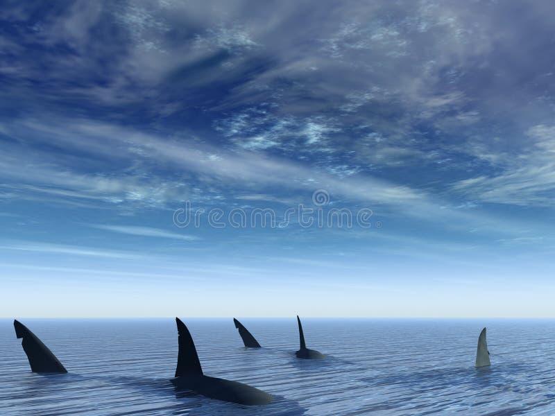 Vuelo de tiburones imagen de archivo