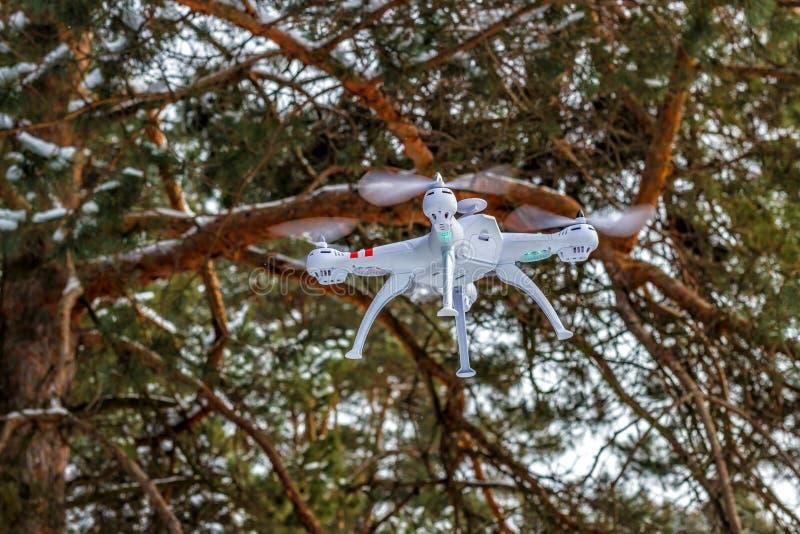 Vuelo del abejón en el bosque del invierno el concepto de aviones sin tripulación Quadcopter, de tecnología y de vigilancia imágenes de archivo libres de regalías