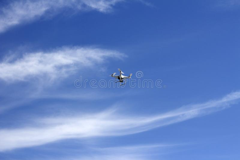 Vuelo del abejón sobre el cielo fotografía de archivo libre de regalías