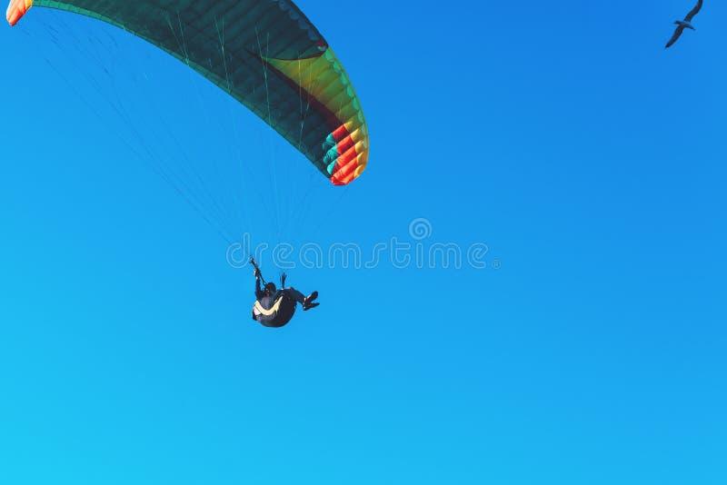 Vuelo del ala flexible en el paracaídas colorido en cielo claro azul en un día de verano soleado brillante Forma de vida activa,  foto de archivo libre de regalías