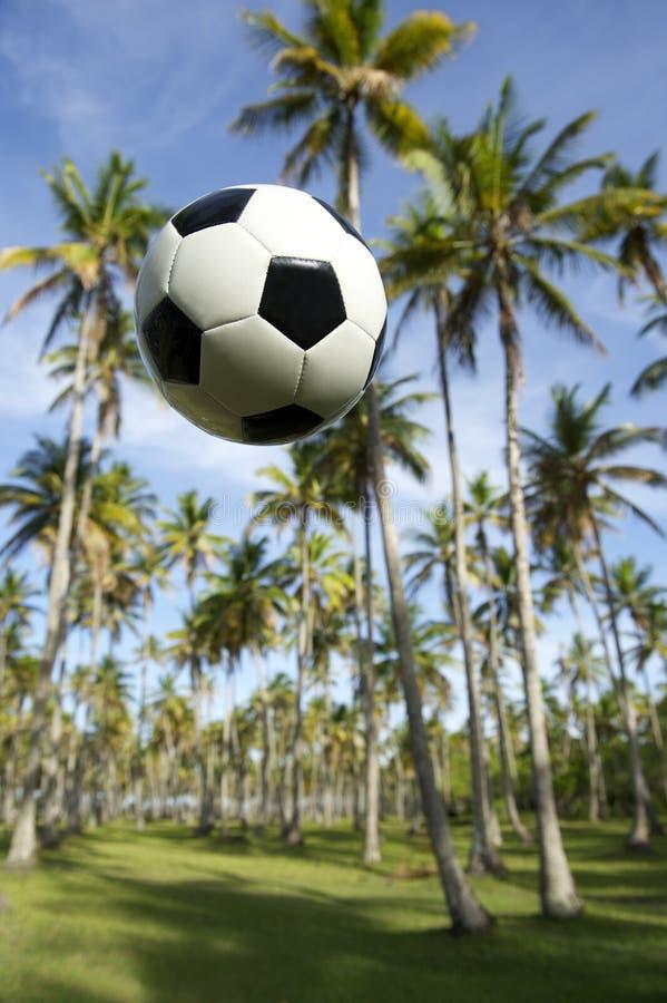 Vuelo del balón de fútbol del fútbol en arboleda brasileña de la palma imagen de archivo libre de regalías