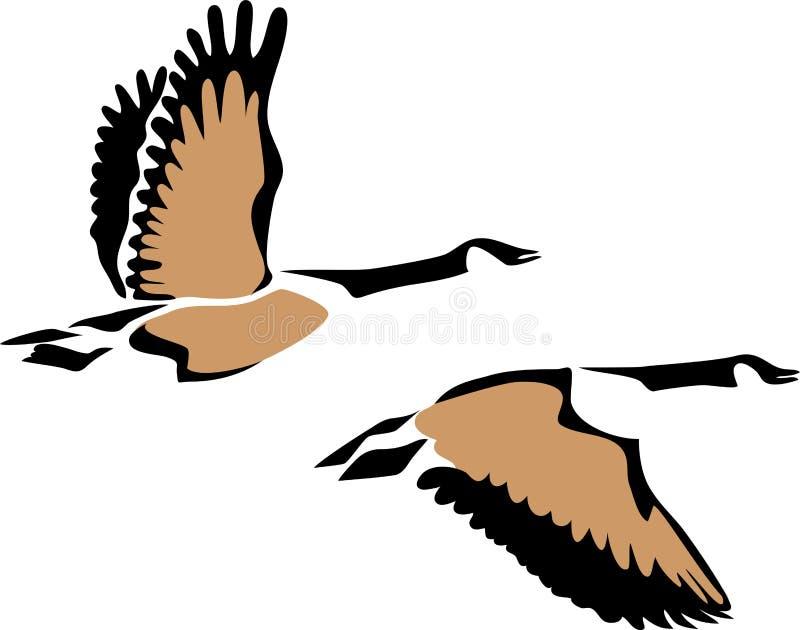 Vuelo del ganso de Canadá libre illustration