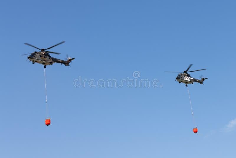 Vuelo para uso general militar suizo T-320 y T-316 de los helicópteros de Aerospatiale AS332 TH89 de la fuerza aérea con los cubo imagenes de archivo