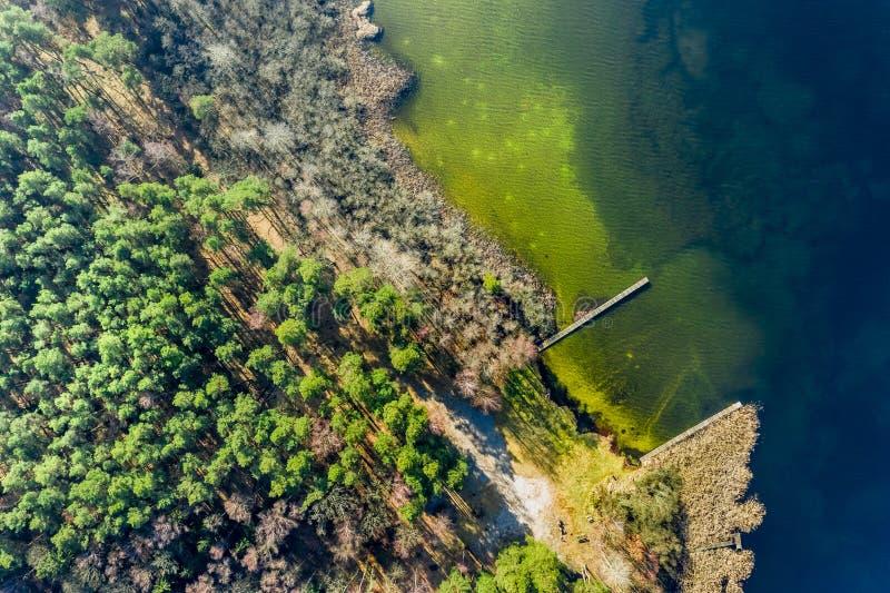 Vuelo sobre el lago y el bosque maravillosos fotos de archivo