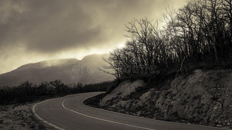 Vuelta precipitada del camino de la montaña entre la madera desnuda del otoño imagenes de archivo