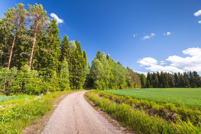 Vuelta rural vacía del camino cerca del campo verde fotografía de archivo libre de regalías