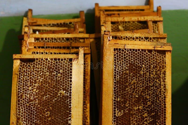 Vues avec la structure de cire d'abeilles complètement du miel frais d'abeille en nids d'abeilles Image authentique de mode de vi image libre de droits