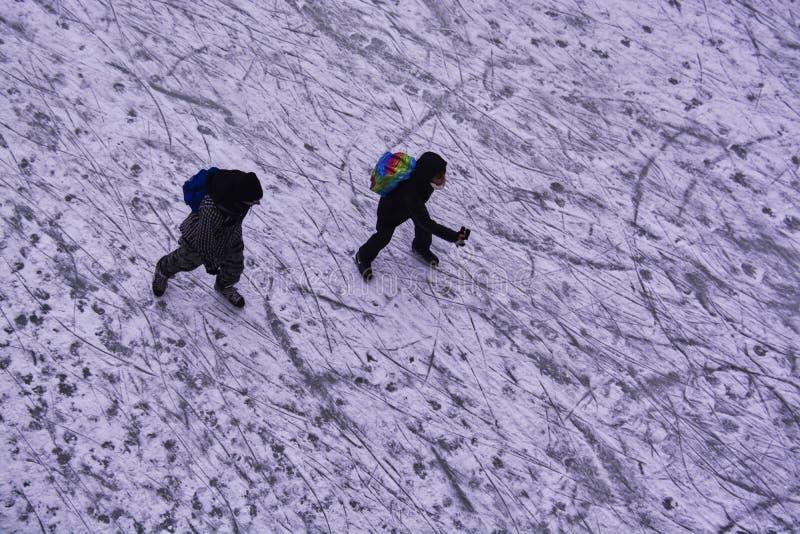 Vues d'hiver de Canada photo stock