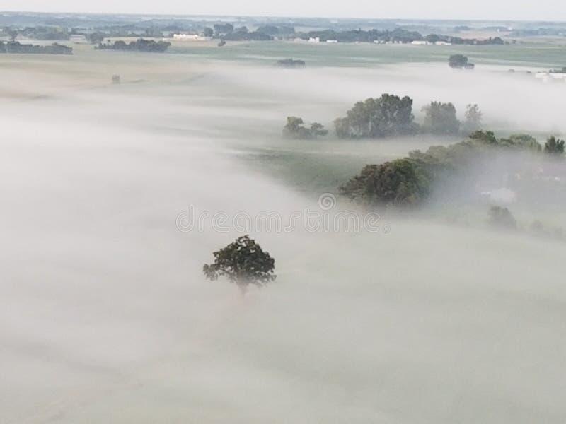Vues de brouillard photo stock
