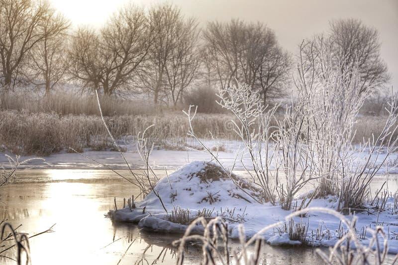 Vues de crique d'hiver photos libres de droits