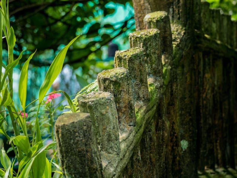 Vues de jardin tropical photographie stock libre de droits