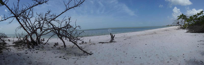 Vues de la Floride photos stock