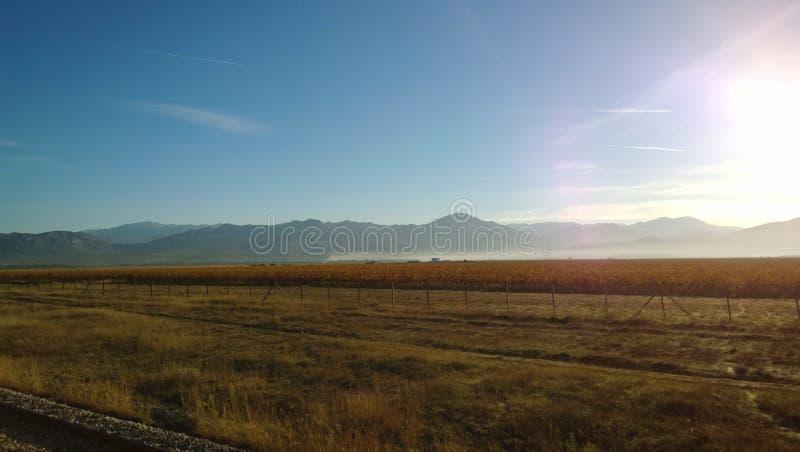 Vues de lac Skadar et des montagnes dans la brume de matin d'un train de dépassement images libres de droits