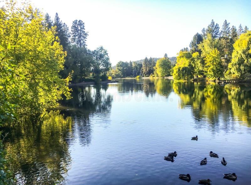 Vues de rivière photo stock
