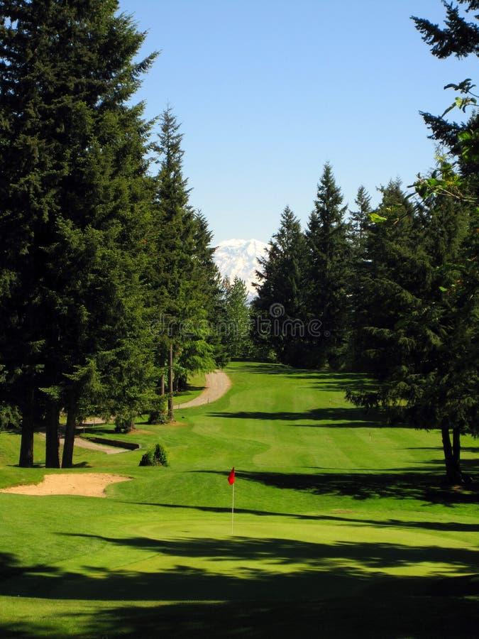 Vues de terrain de golf de région sauvage de lac photos stock