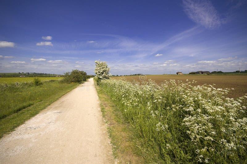 Vues du chemin de fer hors d'usage de sentier piéton de Greenway et de piste cyclable photos libres de droits