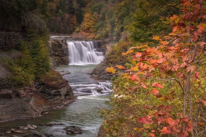 Vues majestueuses des automnes moyens de traînée latérale en automne tôt au parc d'état de Letchworth, NY image stock