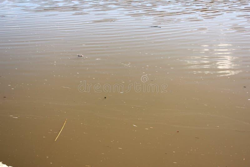 Vuil water in de rivier stock foto