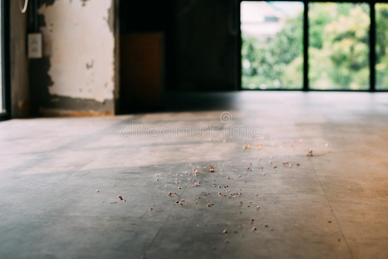 Vuile stoffige houten vloer met spaanders binnen stock afbeeldingen