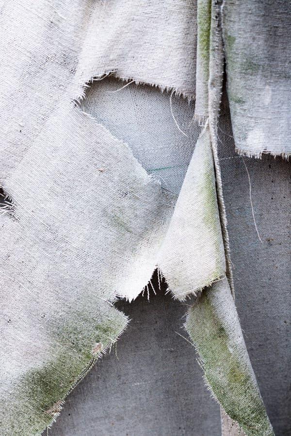 Vuile witte grijze gescheurde grunge uitstekende van het stoffencanvas textuur als achtergrond, met groen mos die alge op het gro royalty-vrije stock foto