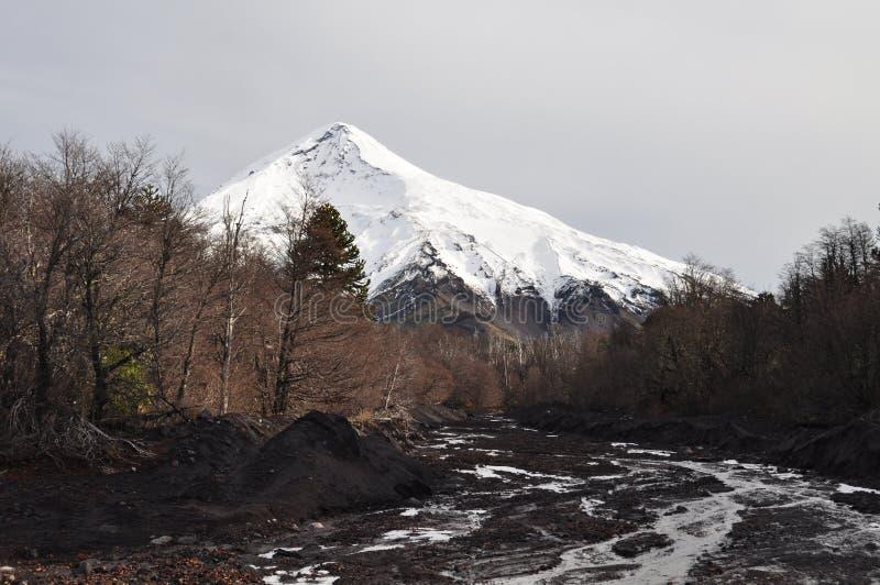Vulcão de Lanin, Patagonia imagens de stock