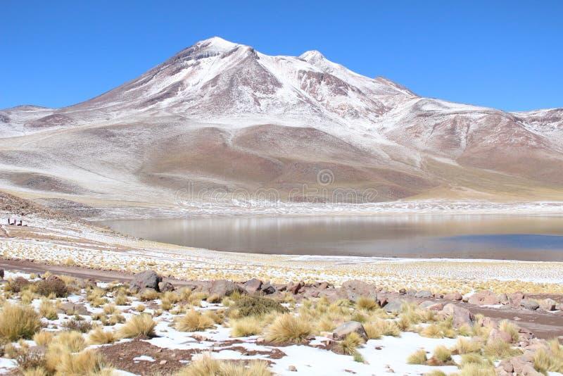 Vulcão de Lascar