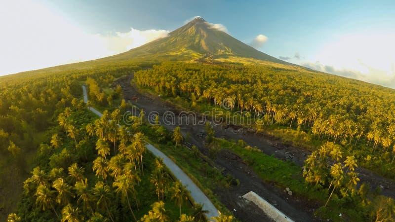 Vulcão de Mayon perto da cidade de Legazpi em Filipinas Vista aérea sobre a selva e a plantação da palma no por do sol Vulcão de  imagem de stock