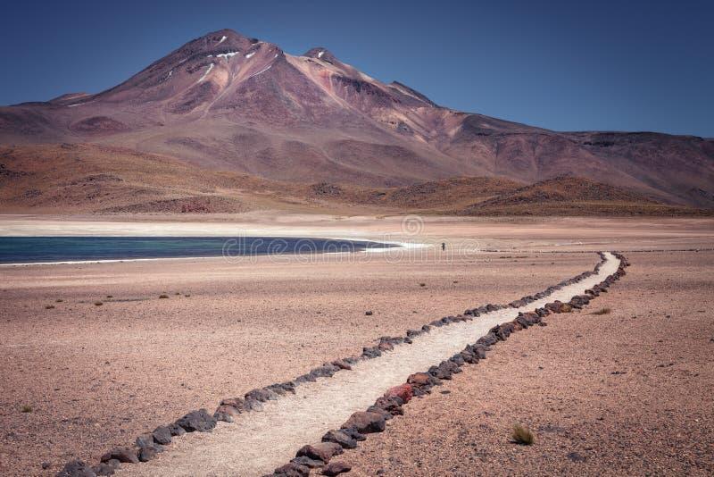 Vulcão de Miniques da lagoa de Miscanti, em Salar de Talar, perto das águas Calientes, na região de Antofagasta, no limite do nor fotografia de stock royalty free