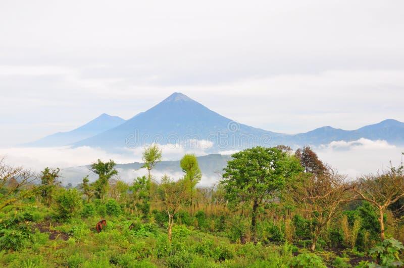 Vulcão do Agua, Guatemala fotografia de stock
