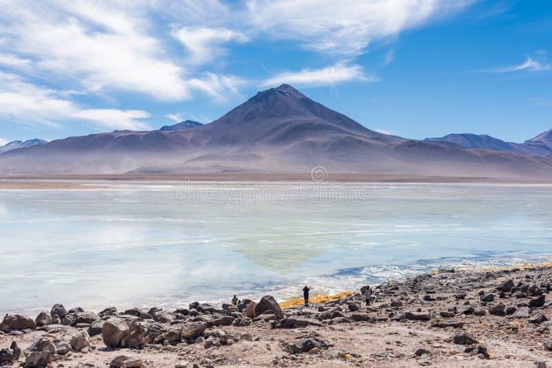 Vulcão do deserto fotografia de stock royalty free