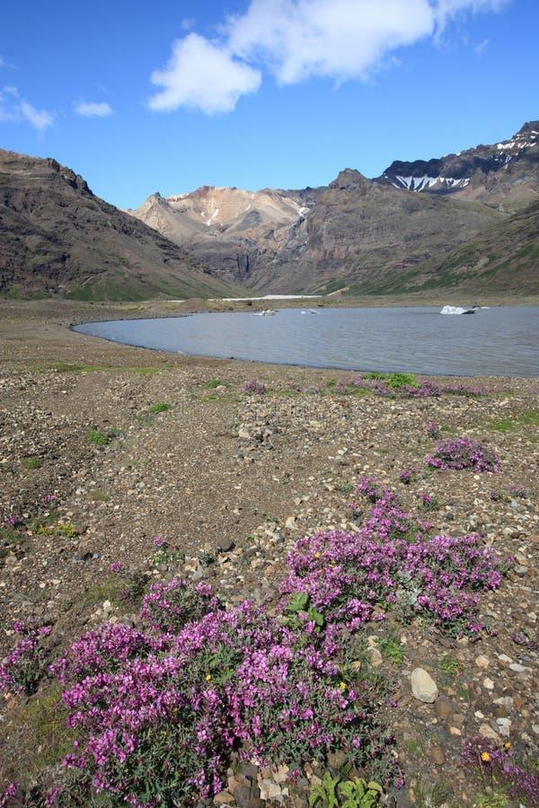 Vulcão em Islândia imagens de stock