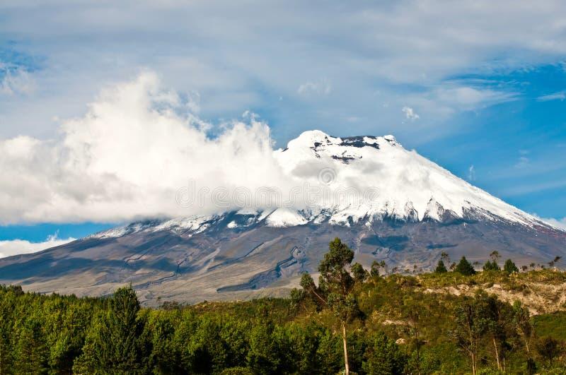 Vulcão sobre o platô, Andes de Cotopaxi de Equador fotos de stock royalty free