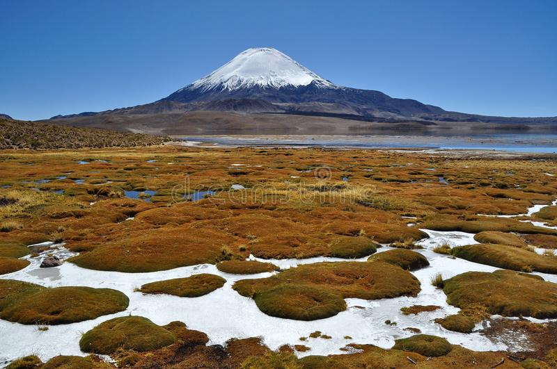 Download Vulcan Parinacota stock image. Image of high, chile, plain - 26237717