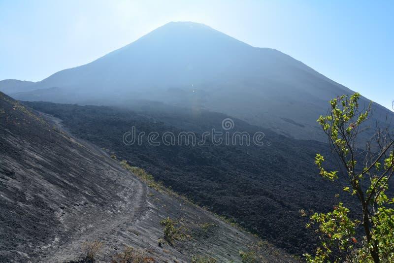 Vulcano di Pacaya vicino all'Antigua Guatemala fotografia stock libera da diritti