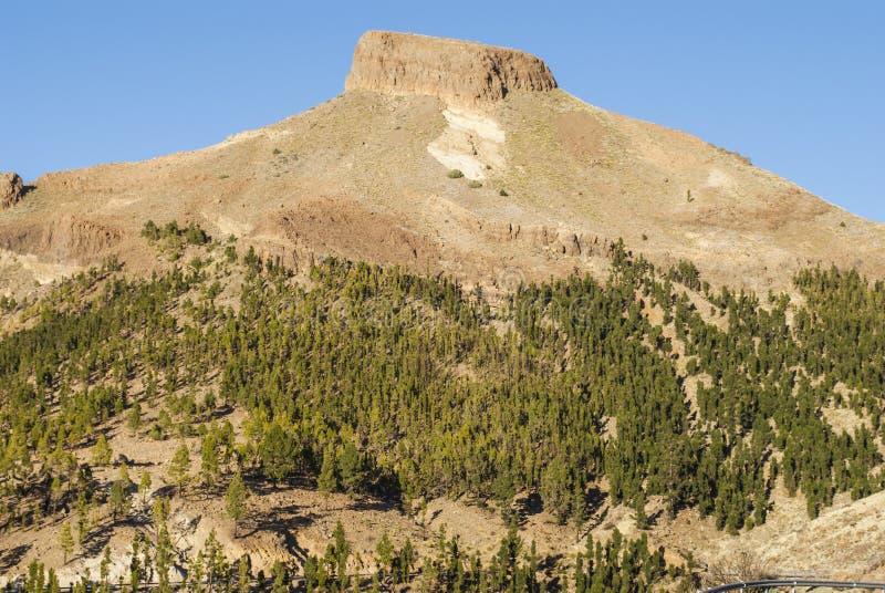 Vulcano di Teide, Isole Canarie fotografia stock