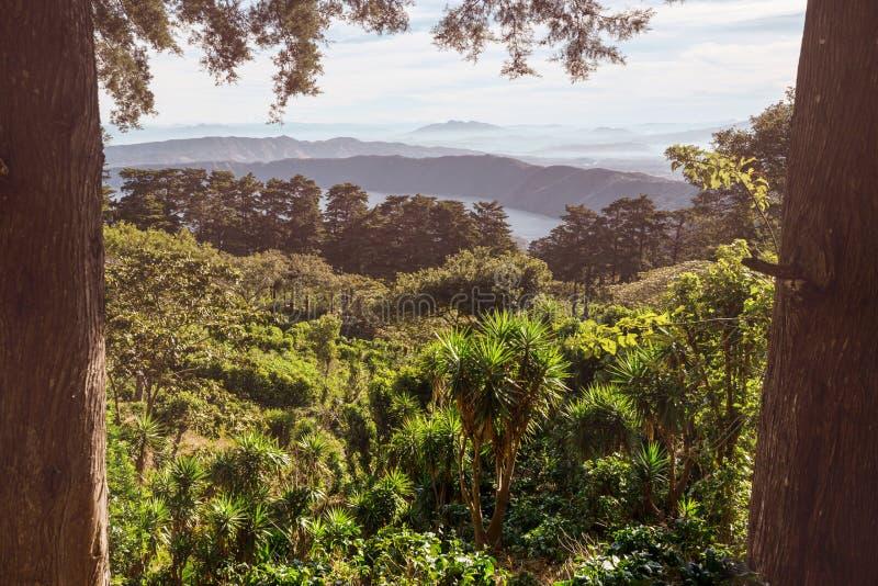 Vulcano in El Salvador fotografia stock libera da diritti