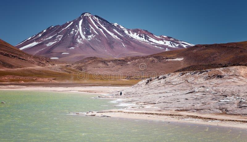 Vulcano Miniques da rosso lapida Piedras Rojas, in Salar de Ta immagini stock
