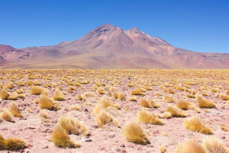 Vulcano nel deserto fotografie stock libere da diritti
