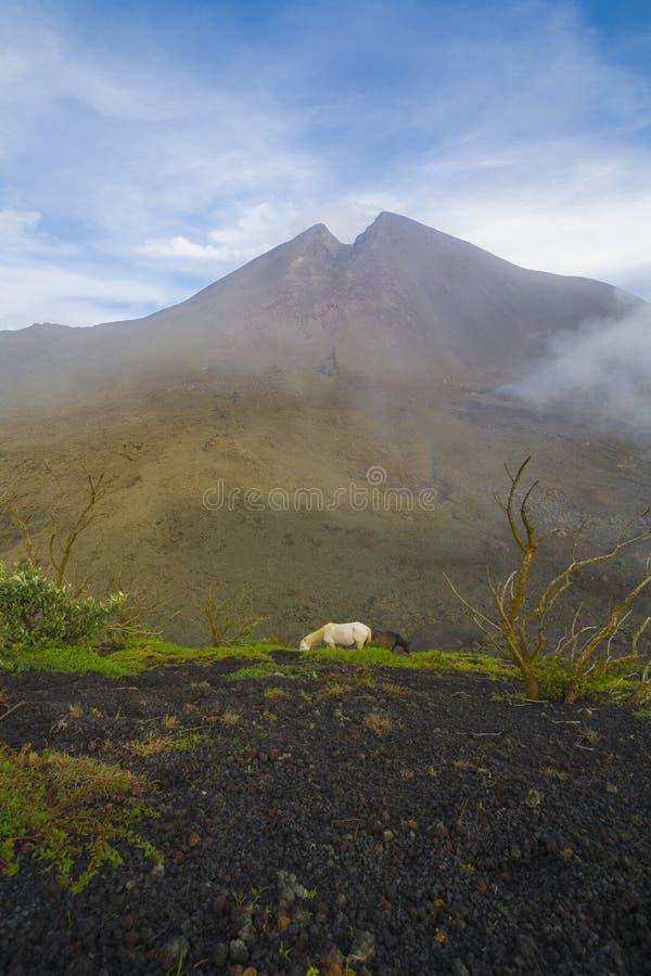 Vulcano nel Guatemala immagine stock libera da diritti