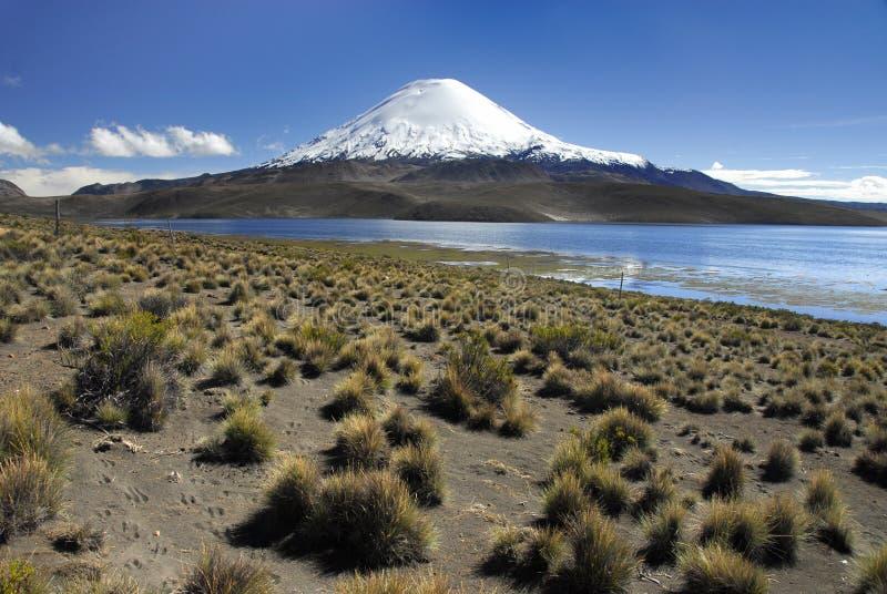 Vulcano Parinacota e lago Chungara fotografia stock