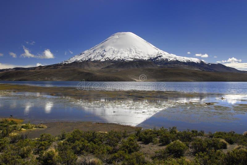 Vulcano Parinacota e lago Chungara immagini stock libere da diritti