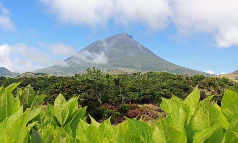 Vulcano Pico all'isola di Pico, Azzorre 01 immagine stock libera da diritti