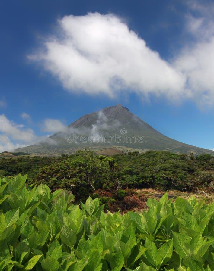 Vulcano Pico all'isola di Pico, Azzorre 02 fotografia stock