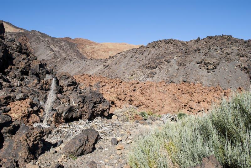Vulcano (Teide - Tenerife) fotografie stock libere da diritti