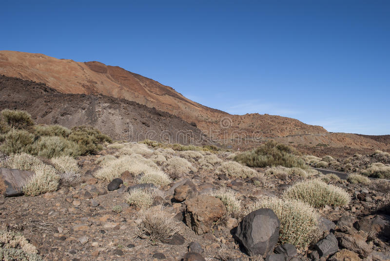 Vulcano (Teide - Tenerife) immagine stock